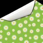 Blumenwiese Gänseblümchen Sommer Wandtattoo