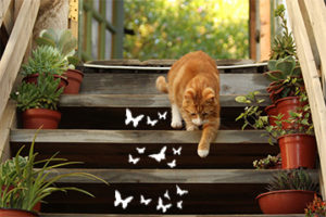 DIY Schmetterlinge Treppe